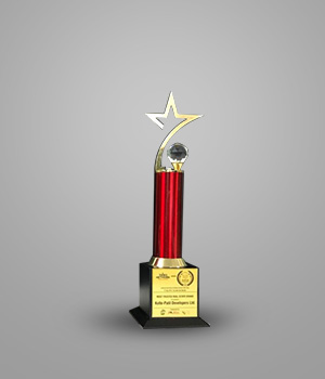 Most Outstanding Industry Contribution